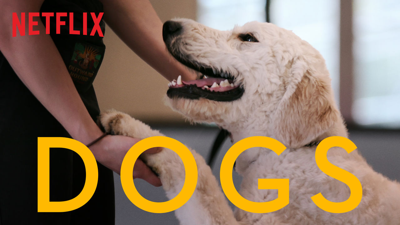 Dogs on Netflix Canada