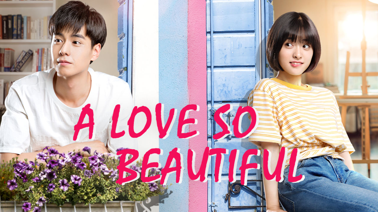A Love So Beautiful on Netflix Canada