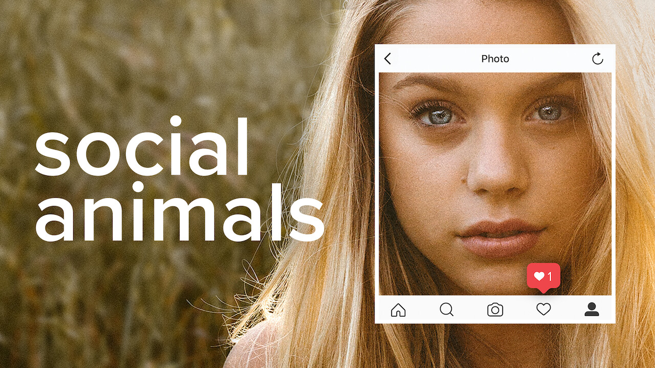 Social Animals on Netflix Canada